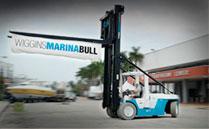 Wiggins Marina Bull